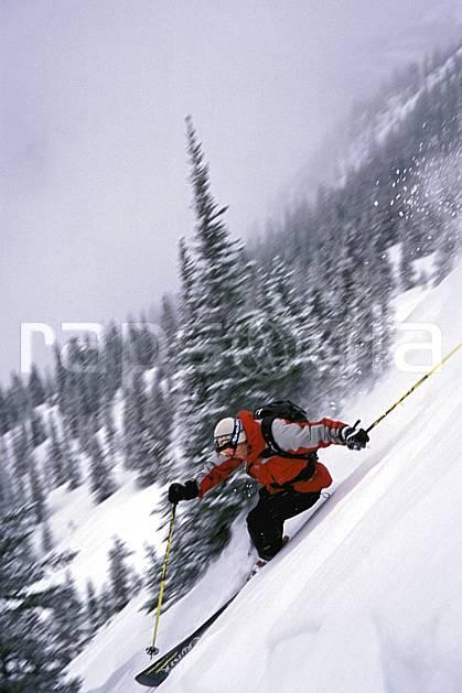 da2380-06LE : Ski-freeride, Marmot Basin, Alberta. ski hors piste Amérique du nord, Amérique, sport, loisir, action, glisse, sport de montagne, sport d'hiver, ski, sport extrême, brouillard, dynamisme, énergie, gerbe, mouvement, pente, poudreuse, sapin, trajectoire, virage coupé, vitesse, C02, C01 arbre, forêt, homme, personnage (Canada).