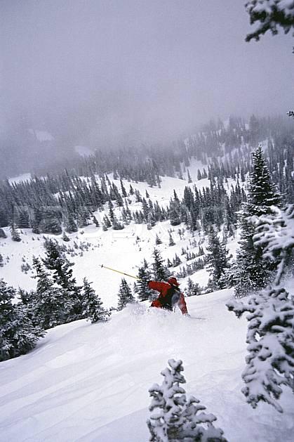 da2380-08LE : Ski-freeride, Marmot Basin, Alberta. ski hors piste Amérique du nord, Amérique, sport, loisir, action, glisse, sport de montagne, sport d'hiver, ski, sport extrême, brouillard, gerbe, godille, pente, poudreuse, sapin, virage, C02, C01 arbre, forêt, homme, personnage (Canada).