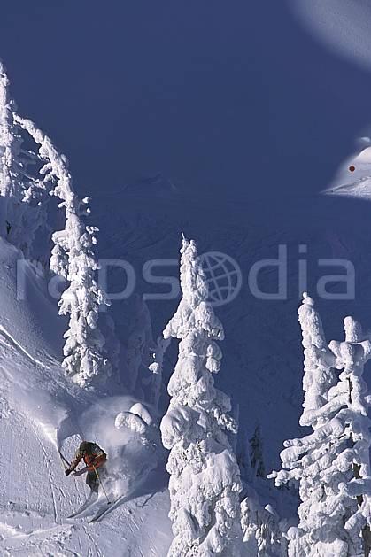 da2604-32LE : Ski-freeride, Fernie, Colombie Britannique. ski hors piste Amérique du nord, Amérique, sport, loisir, action, glisse, sport de montagne, sport d'hiver, ski, sport extrême, ciel bleu, gerbe, poudreuse, sapin, trace, virage coupé, C02, C01 arbre, forêt, homme, personnage (Canada).