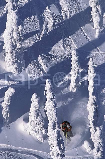 da2604-33LE : Ski-freeride, Fernie, Colombie Britannique. ski hors piste Amérique du nord, Amérique, sport, loisir, action, glisse, sport de montagne, sport d'hiver, ski, sport extrême, poudreuse, sapin, trace, virage coupé, C02, C01 arbre, forêt, homme, personnage (Canada).