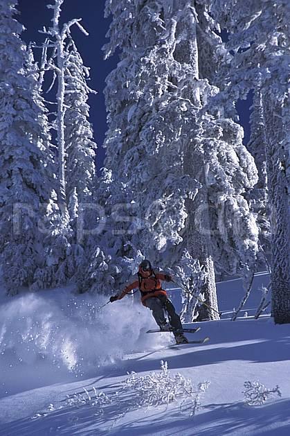 da2605-19LE : Ski-freeride, Fernie, Colombie Britannique. ski hors piste Amérique du nord, Amérique, sport, loisir, action, glisse, sport de montagne, sport d'hiver, ski, sport extrême, godille, poudreuse, sapin, virage, C02, C01 arbre, forêt, homme, personnage (Canada).