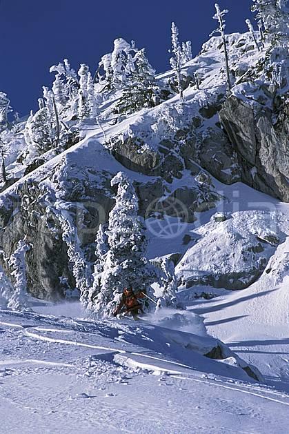 da2606-09LE : Ski-freeride, Fernie, Colombie Britannique. ski hors piste Amérique du nord, Amérique, sport, loisir, action, glisse, sport de montagne, sport d'hiver, ski, sport extrême, barre rocheuse, ciel bleu, godille, poudreuse, sapin, virage, C02, C01 arbre, homme, personnage (Canada).