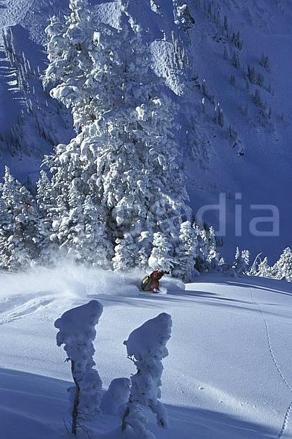 da2915-20LE : Ski-freeride, Snowbird, Utah. ski hors piste Amérique du nord, sport, loisir, action, glisse, sport de montagne, sport d'hiver, ski, sport extrême, gerbe, grande courbe, poudreuse, sapin, virage, C02, C01 arbre, homme, personnage (Usa).