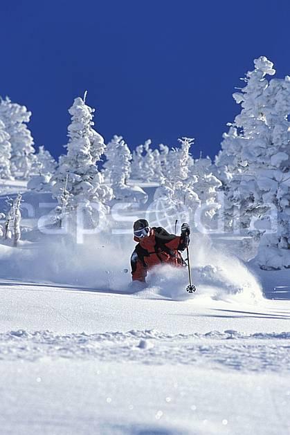 da2915-27LE : Ski-freeride, Snowbird, Utah. ski hors piste Amérique du nord, sport, loisir, action, glisse, sport de montagne, sport d'hiver, ski, sport extrême, ciel bleu, gerbe, poudreuse, sapin, virage, virage coupé, C02, C01 arbre, homme, personnage (Usa).