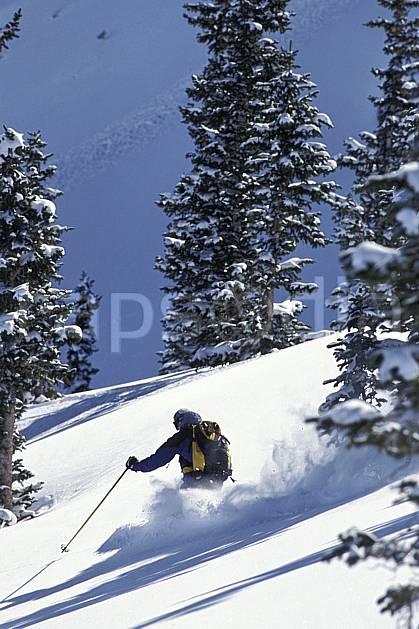 da2918-31LE : Ski-freeride, Snowbird, Utah. ski hors piste Amérique du nord, sport, loisir, action, glisse, sport de montagne, sport d'hiver, ski, sport extrême, gerbe, godille, poudreuse, sac à dos, sapin, virage, C02, C01 arbre, homme, personnage (Usa).