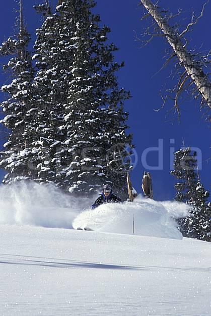 da2920-03LE : Ski-freeride, Snowbird, Utah. ski hors piste Amérique du nord, sport, loisir, action, glisse, sport de montagne, sport d'hiver, ski, sport extrême, ciel bleu, délectation, gerbe, glisse, godille, liberté, pente, plaisir, poudreuse, sapin, virage, C02, C01 arbre, homme, personnage (Usa).