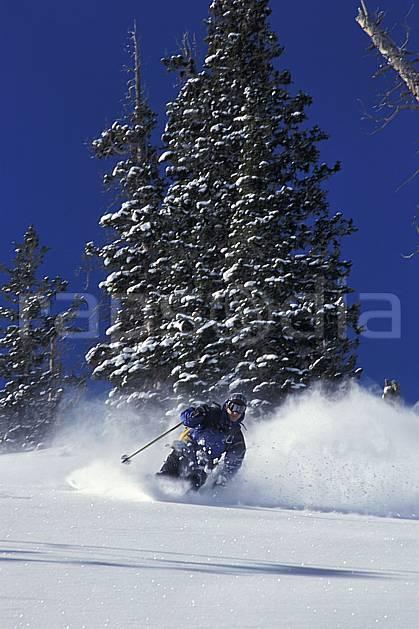 da2920-05LE : Ski-freeride, Snowbird, Utah. ski hors piste Amérique du nord, sport, loisir, action, glisse, sport de montagne, sport d'hiver, ski, sport extrême, ciel bleu, gerbe, poudreuse, sapin, virage, virage coupé, C02, C01 arbre, homme, personnage (Usa).