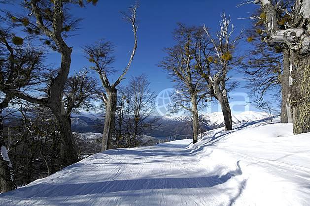 ea054827LE : Cerro Catedral, Bariloche, Patagonie.  Amérique du sud, Amérique Latine, Amérique, route, C02, C01 arbre, moyenne montagne, paysage, voyage aventure (Argentine).