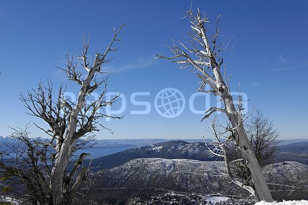 ea054829LE : Cerro Catedral, Bariloche, Patagonie.  Amérique du sud, Amérique Latine, Amérique, C02, C01 arbre, lac, moyenne montagne, paysage, voyage aventure (Argentine).
