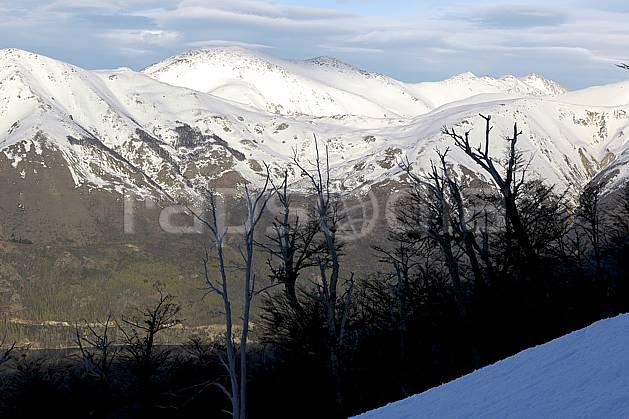 ea054839LE : Cerro Catedral, Bariloche, Patagonie.  Amérique du sud, Amérique Latine, Amérique, C02, C01 arbre, moyenne montagne, paysage, voyage aventure (Argentine).