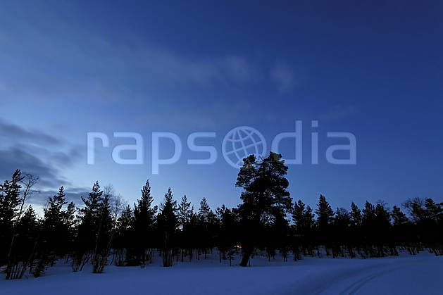 ea061430LE : Nuit en Laponie.  Europe, CEE, nuit, lumière, C02, C01 forêt, paysage, voyage aventure (Finlande).