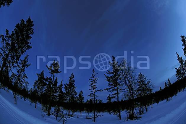 ea061434LE : Nuit en Laponie.  Europe, CEE, nuit, lumière, C02, C01 arbre, forêt, paysage, voyage aventure (Finlande).