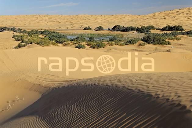 ea063656LE : Désert du Sud Tunisien, au sud de Douz, Oasis, lac au milieu des dunes.  Afrique, Afrique du nord, dune, C02, C01 arbre, désert, lac, paysage, voyage aventure (Tunisie).