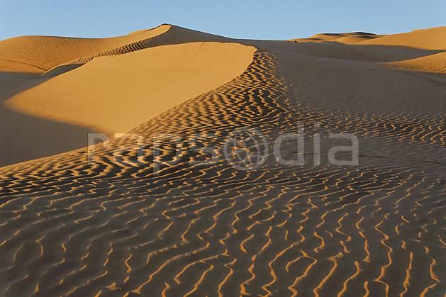 ea063667LE : Désert du Sud Tunisien, au sud de Douz, Dunes de sable.  Afrique, Afrique du nord, dune, C02, C01 désert, paysage, voyage aventure (Tunisie).