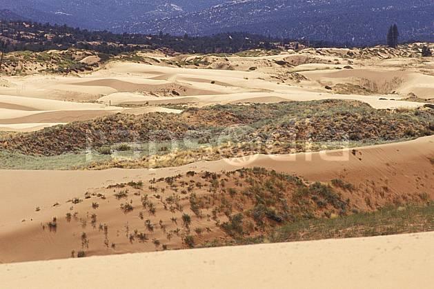 ea0660-09LE : Pink Sand Dune, Utha.  Amérique du nord, buisson, dune, parc américain, C02, C01 désert, paysage, voyage aventure (Usa).