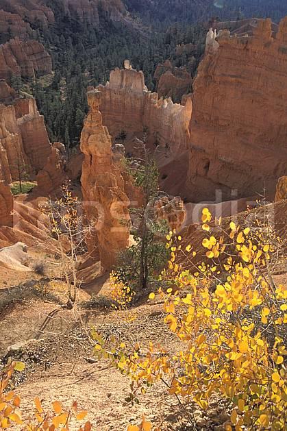ea0662-05LE : Bryce Canyon, Utah.  Amérique du nord, pic, canyon, parc américain, érosion, C02, C01 paysage, voyage aventure (Usa).