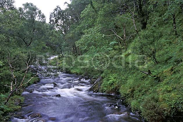 ea2066-29LE : Rivière, Highlands, Ecosse.  Europe, CEE, écosse, C02, C01 arbre, paysage, rivière, voyage aventure (Royaume-Uni).