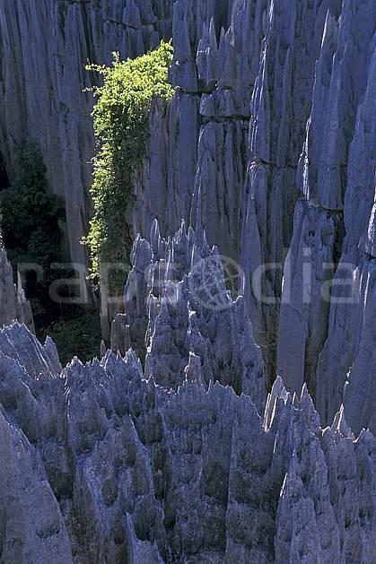ea2275-02LE : Les Tsingy de Bemaraha.  Afrique, Afrique de l'est, chaos, tsingy, érosion, C02, C01 paysage, voyage aventure (Madagascar).