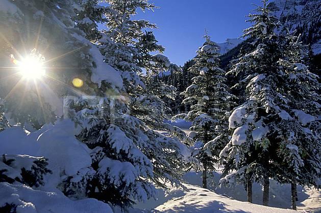 ea2373-36LE : Lake Louise, Alberta.  Amérique du nord, Amérique, ciel bleu, sapin, C02, C01 arbre, forêt, paysage, soleil, voyage aventure (Canada).