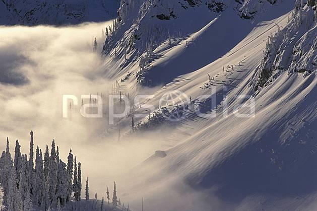 ea2603-32LE : Colombie Britannique.  Amérique du nord, Amérique, brouillard, sapin, C02, C01 paysage, voyage aventure (Canada).