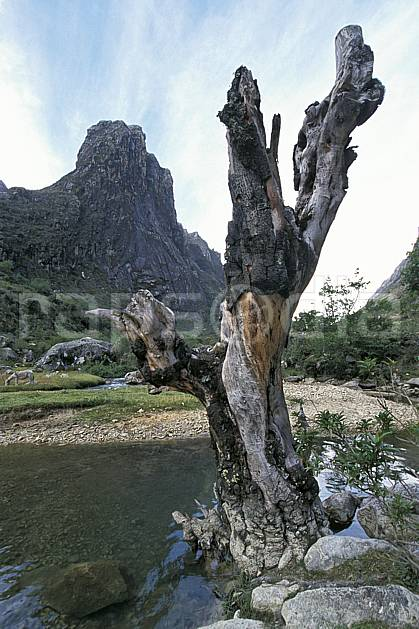 ea2733-20LE : Quebrada Santa Cruz.  Amérique du sud, Amérique Latine, ciel voilé, tronc, C02, C01 paysage, rivière, voyage aventure (Pérou).
