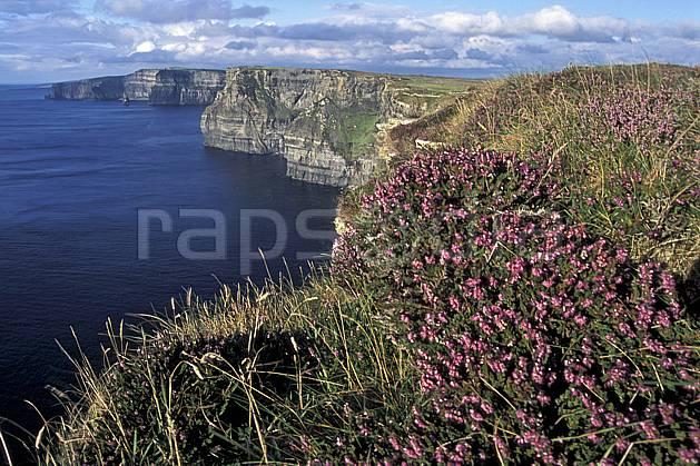 ea3177-05LE : Paysage d'Irlande, Cliffs of Moher.  Europe, CEE, falaise, C02, C01 flore, mer, paysage, voyage aventure (Irlande).