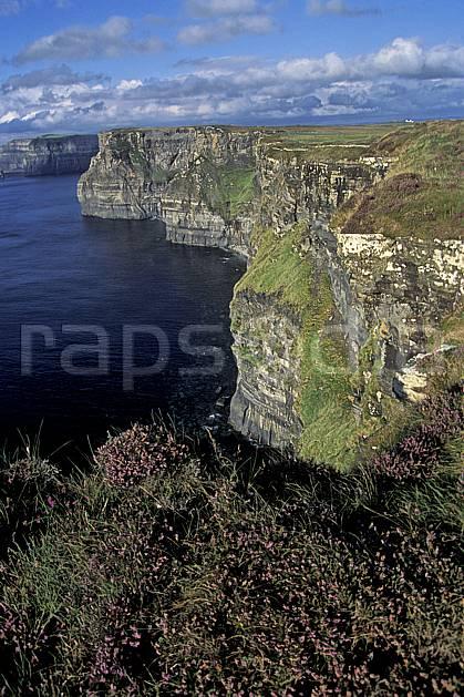 ea3177-07LE : Paysage d'Irlande, Cliffs of Moher.  Europe, CEE, falaise, C02, C01 flore, mer, paysage, voyage aventure (Irlande).