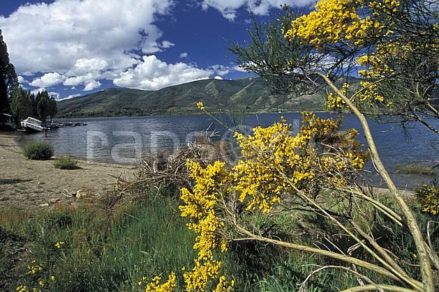 ea3183-01LE : Patagonie.  Amérique du sud, Amérique Latine, Amérique, fleur, C02, C01 flore, lac, moyenne montagne, nuage, paysage, voyage aventure (Argentine).