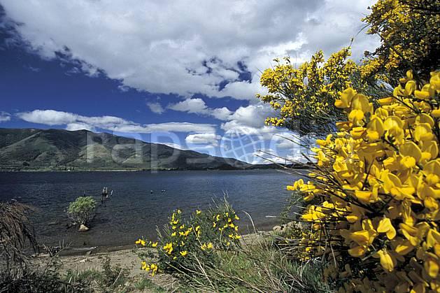 ea3183-02LE : Patagonie.  Amérique du sud, Amérique Latine, Amérique, fleur, C02, C01 flore, lac, moyenne montagne, nuage, paysage, voyage aventure (Argentine).
