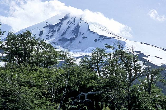 ea3187-02LE : Patagonie.  Amérique du sud, Amérique Latine, Amérique, C02, C01 forêt, moyenne montagne, paysage, voyage aventure (Argentine).
