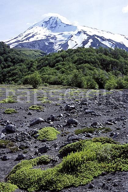 ea3187-05LE : Patagonie.  Amérique du sud, Amérique Latine, Amérique, C02, C01 forêt, moyenne montagne, paysage, voyage aventure (Argentine).