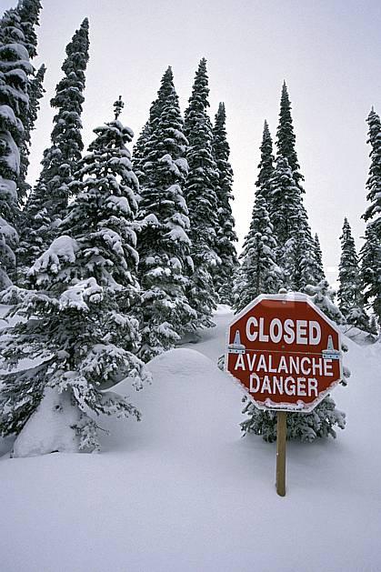ee2603-13LE : Panneaux : Danger d'avalanche, Alberta.  Amérique du nord, Amérique, ciel nuageux, panneau, poudreuse, C02, C01 arbre, environnement, voyage aventure (Canada).