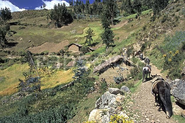 ee2711-16LE : Village au dessus de Chavin.  South America, Latin America, grass, donkey environment, fauna, habitation, people, adventure trip (Peru).