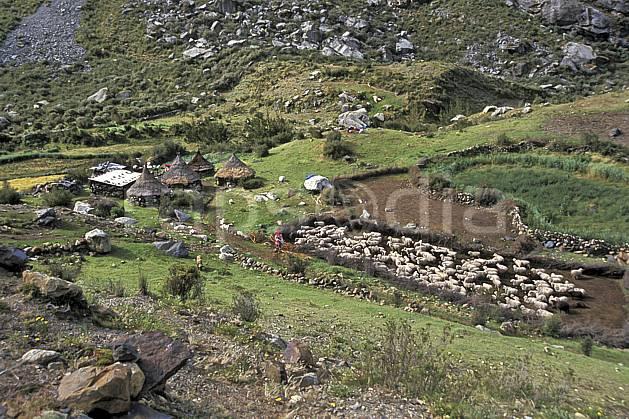ee2724-11LE : Quebrada Quilcayhuanca, Hameau.  Amérique du sud, Amérique Latine, herbe, mouton, C02, C01 environnement, faune, habitation, voyage aventure (Pérou).