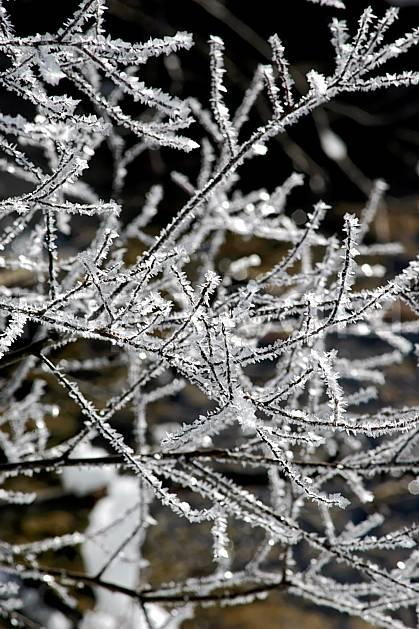 fa050180LE : Branches givrées. Bavière.  Europe, CEE, givre, C02, C01 arbre, flore, forêt, gros plan, textures et fonds (Allemagne).