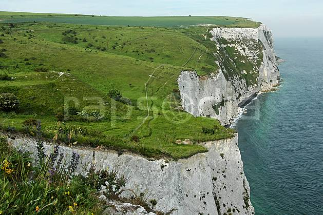 ha040572LE : Falaises de craie de Douvres.  Europe, CEE, falaise, craie, littoral, herbe, C02, C01 mer, paysage (Royaume-Uni).