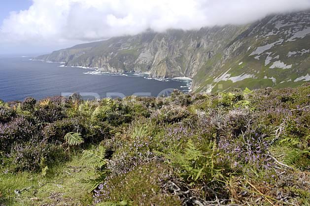 ha072015LE : Bruyères et falaises de Slieve League, Donegal.  Europe, CEE, littoral, C02 mer, nuage, paysage (Irlande).
