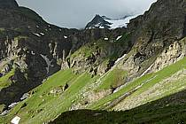 Combe de la Neuva, Beaufortain, Savoie, Alpes, ref aa041243LE