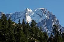 Depuis le Col Checrouit, Grandes Jorasses, Alpes, ref aa042125LE