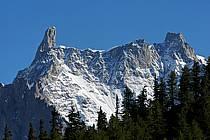 Depuis le Col Checrouit, Dent du Géant, Aiguille de Rochefort, Alpes, ref aa042127LE