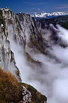 Falaise du Parmelan, Haute-Savoie, ref aa0479-20GE