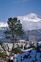 Mont Blanc depuis le Parmelan, Haute-Savoie, ref aa0479-26GE