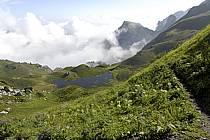 Col de Bise et lac de Neuteu, Chablais, Haute-Savoie, ref aa063003GE