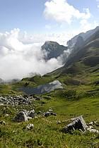 Col de Bise et lac de Neuteu, Chablais, Haute-Savoie, ref aa063008GE