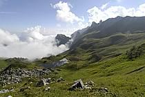 Col de Bise and lac de Neuteu, Chablais, Haute-Savoie, Alpes, ref aa063010GE