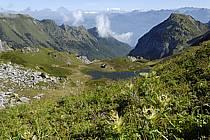 Col de Bise, lac de Neuteu et lac Léman, Chablais, Haute-Savoie, Alpes, ref aa063346LE