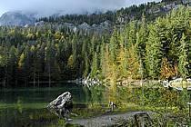 Plateau d'Assy, Lac Vert, Haute-Savoie, ref aa063408GE