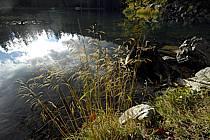 Plateau d'Assy, Lac Vert, Haute-Savoie, ref aa063422GE