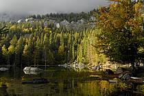 Plateau d'Assy, Lac Vert, Haute-Savoie, ref aa063427GE