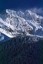 Massif de la Tournette, Haute-Savoie, ref aa0695-28GE